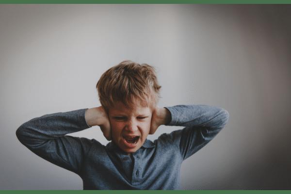 Agressivité chez l'enfant et l'adolescent : prévenir et agir